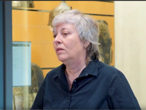 Florence Bergeaud-Blackler, Le marché halal, une tradition ?