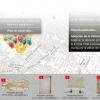 Côté chaire côté rue: la Réforme à Genève 1517-1617